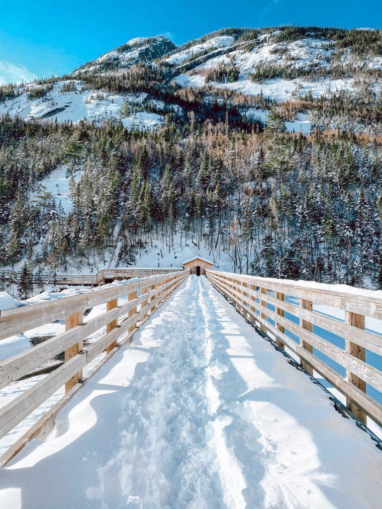hautes-gorges-de-la-riviere-malbaie-hiver